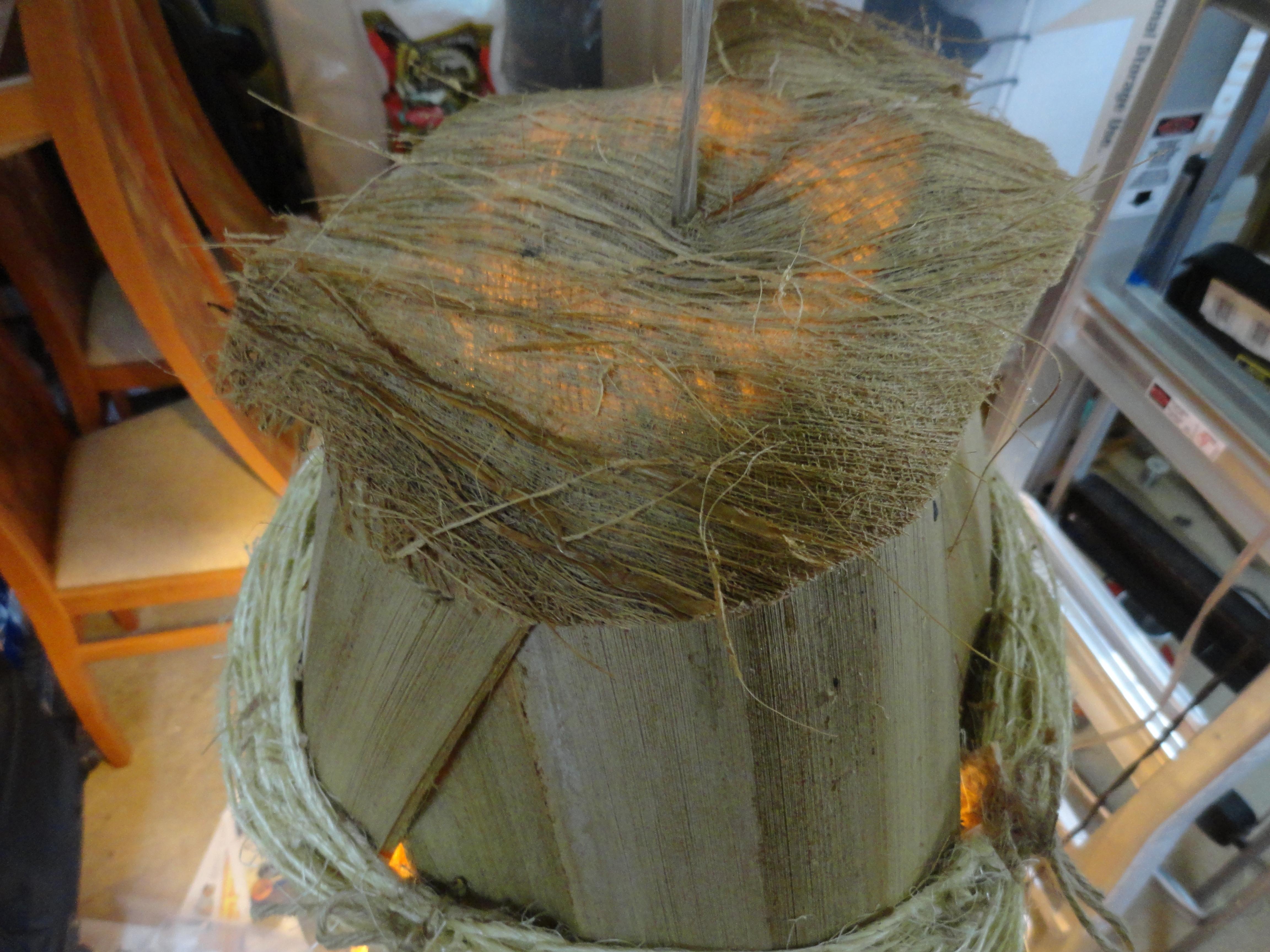 Hawaiian Seed Pod Lamp Ronnie Dean Art Hawaiian Art